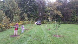 children planting trees 300x169 - children-planting-trees