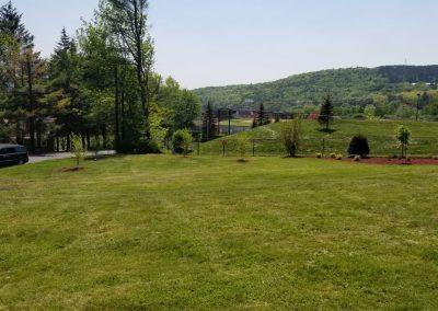 fence line after3 400x284 - Apartment Complex Landscape