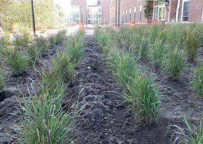 hartwick landscaping 10 400x284 - Portfolio