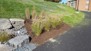 suny stormwater planning 1 300x169 - suny-stormwater-planning-1