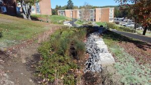 suny stormwater planning 11 300x169 - suny-stormwater-planning-11