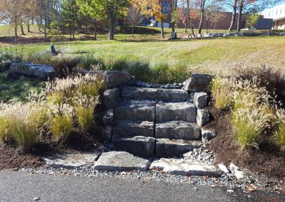 suny stormwater planning 12 400x284 - SUNY Stormwater Plantings