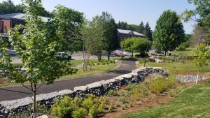 suny stormwater planning 300x169 - suny-stormwater-planning