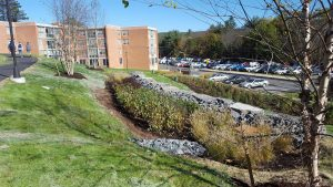 suny stormwater planning 4 300x169 - suny-stormwater-planning-4
