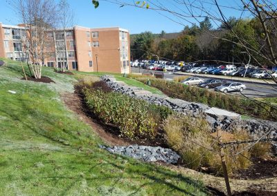suny stormwater planning 4 400x284 - SUNY Stormwater Plantings