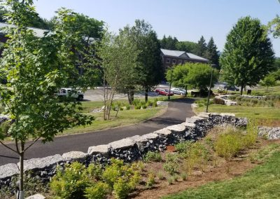 suny stormwater planning 400x284 - SUNY Stormwater Plantings