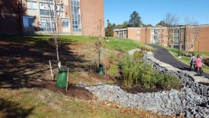 suny stormwater planning 6 300x169 - suny-stormwater-planning-6