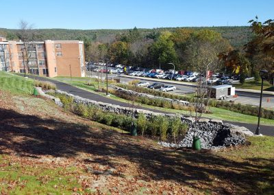 suny stormwater planning 7 400x284 - SUNY Stormwater Plantings