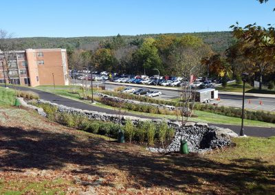 suny stormwater planning 8 400x284 - SUNY Stormwater Plantings