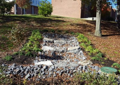 suny stormwater planning 9 400x284 - SUNY Stormwater Plantings